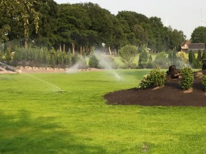 tuin beregening incl pop up sroeiers